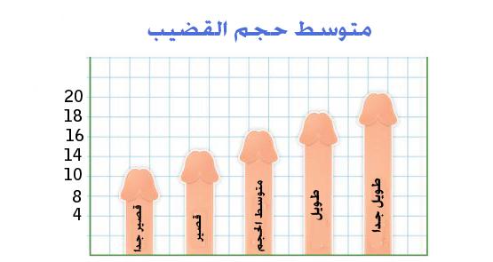 متوسط-حجم-القضيب